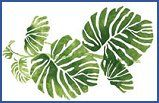 Rainforest Philodendron 1 Home Decor Stencil - jungle-themed decorating ideas
