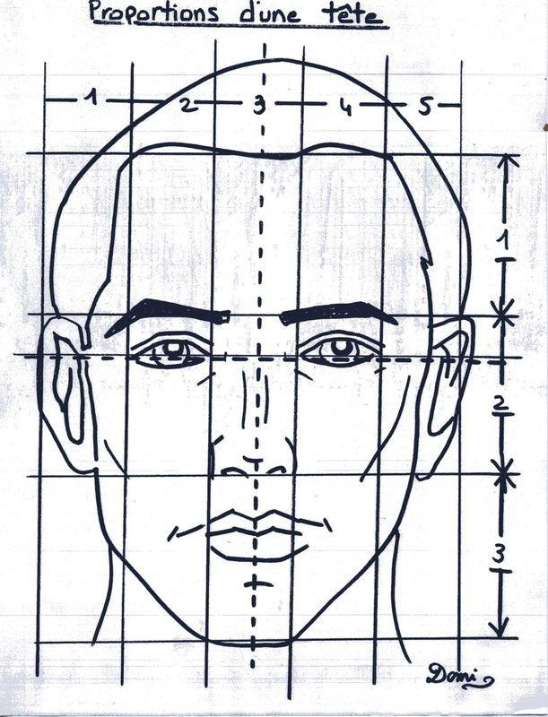 dimensions pour dessiner un portrait | Comment dessiner un PORTRAIT - Domi…