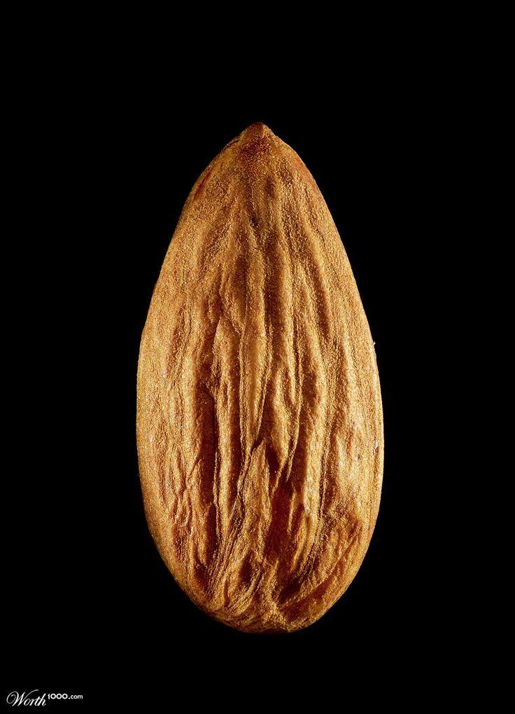 almond - Worth1000 Contests
