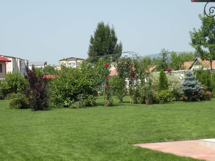 Coralya ~ dream garden