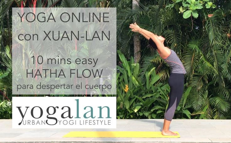 10 mins clase de Hatha flow yoga