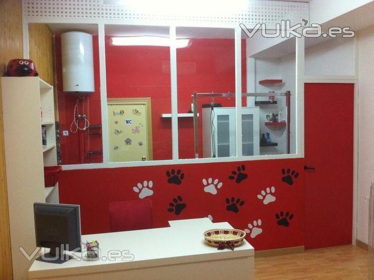 decoracion para peluqueria canina - Buscar con Google