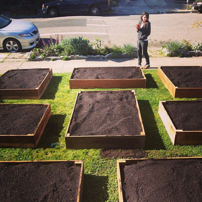 Flat bed garden in the front yard. Story follows transformation and gives good gardening advice.
