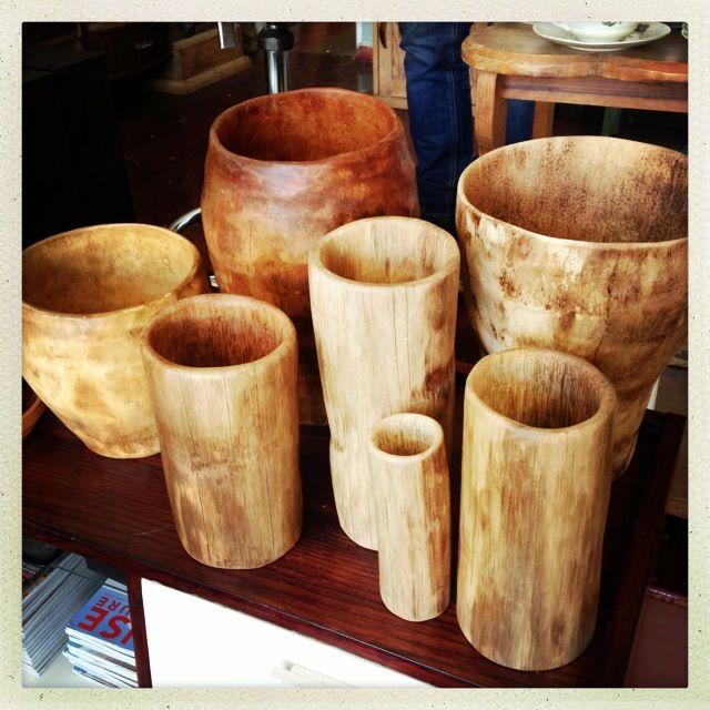 Sisal tree 'vases' (Karoo, South Africa)