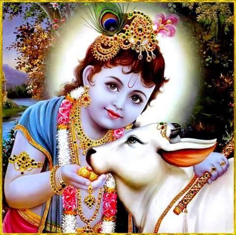 Sree Krishna Janmashtami Wishes to Everyone - TemplePurohit.com  Krishna is one of the most widely worshiped avatars of Mahavishnu. Janmashtami literally translates to birthday and Krishna janmashtami commemorates the birth of lord Krishna. Krishna jayanthi is not exclusive to vaishnavites alone. Across the Hindu society Krishna janmashtami is celebrated by all. According to traditional Hindu astrology Lord Krishna was born when the moon entered the house of Vrishabha (Taurus) at the Rohini…