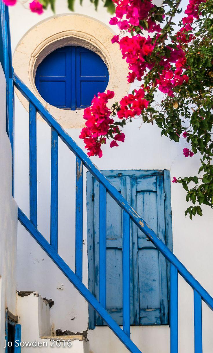 Bougainvillea in Sifnos, Greece