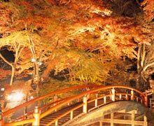 Kajikabashi bridge. Looking for more information aboout Gunma? Go Visit Shibukawaikaho Hot Springs Tourism Association.  http://www2.wind.ne.jp/