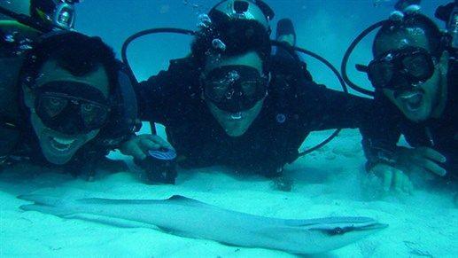 Three insanely happy scuba divers! Adrenalin!  #Mexico #North #America
