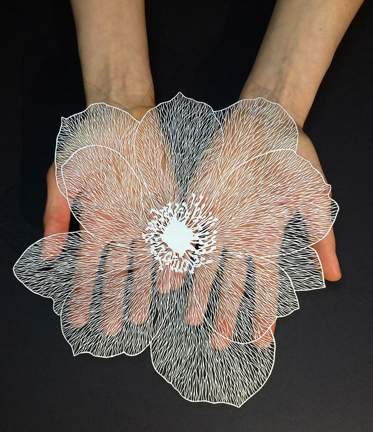 New Delicate Cut Paper Flowers by Maude White | Colossal