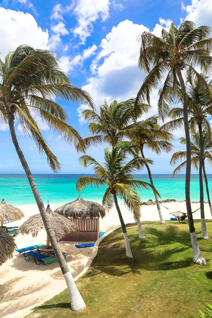 ARUBA, baby! Divi Aruba All-Inclusive Resort is perfect for sun, sand and all-you-can-eat and drink relaxation!