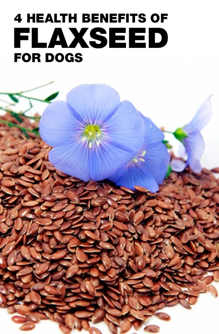 4 HEALTH BENEFITS OF FLAXSEED FOR DOGS 1. Omega-3 fatty acids keep your dog's skin, coat, and heart healthy 2. Soluble fiber aids digestion and eliminates oxidized cholesterol  3. Anti-inflammatory alpha-linoleic acid supports joint health 4. Antioxidant lignans support the immune system  Learn more >> http://www.luckypetbrands.com/blogs/news/85121729-4-flaxseed-benefits-for-dogs