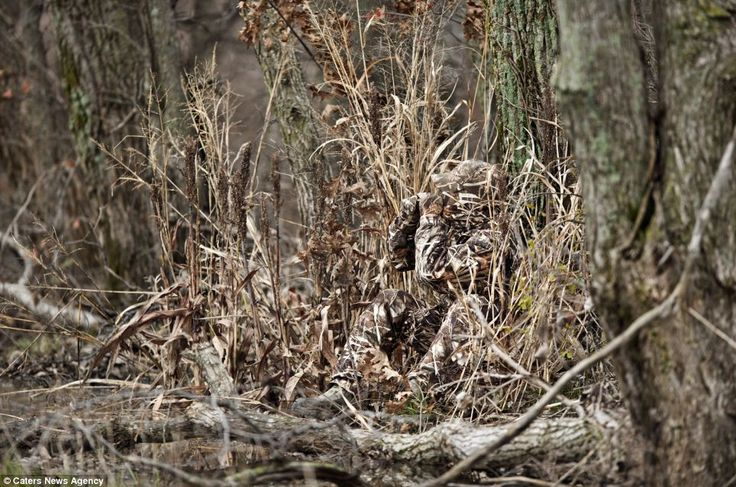 Camouflage suits that make wearers almost impossible to see | Mail Online