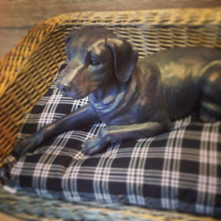 Oh my dog!! letto in rattan in diverse misure