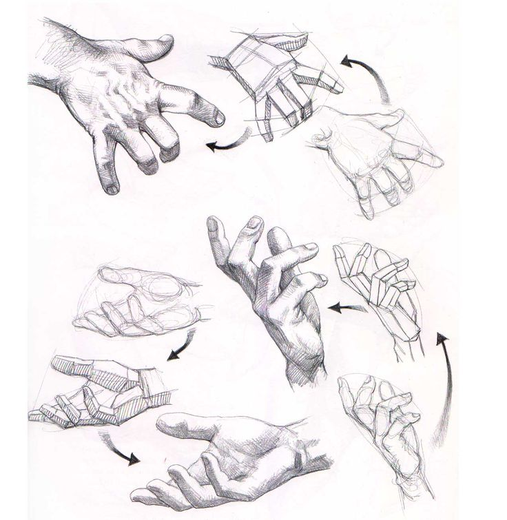 Aprender a dibujar manos y pies   El Dibujante 2.0