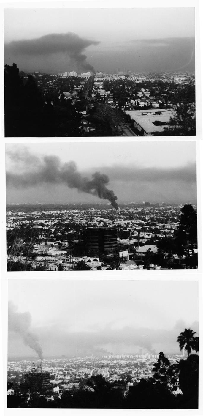 the los angeles riots of 1992 essay The nature of a anger involves violence, retaliation, and even sometimes death  in 1992 the city of los angeles witnessed a wide open attack.