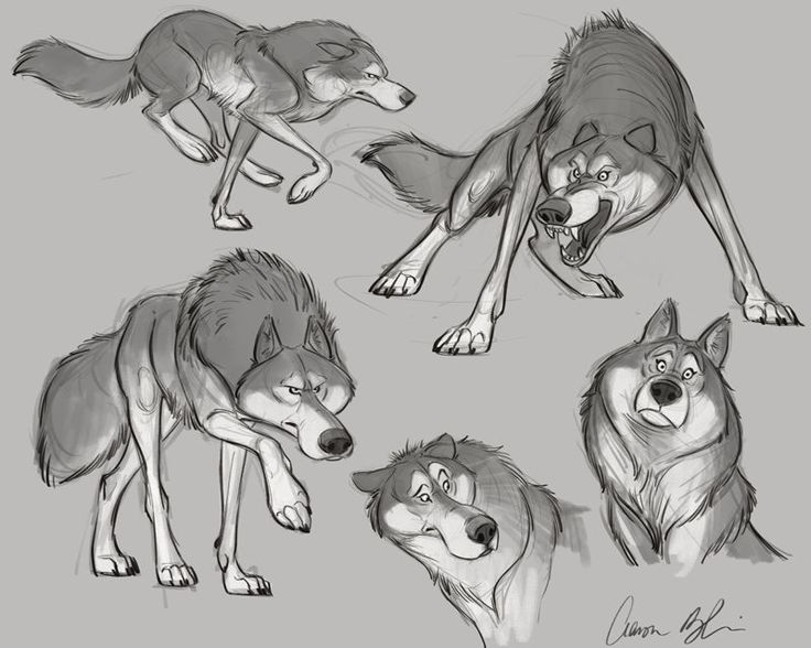 Character Design With Aaron Blaise : Best images about creature design wolves on pinterest