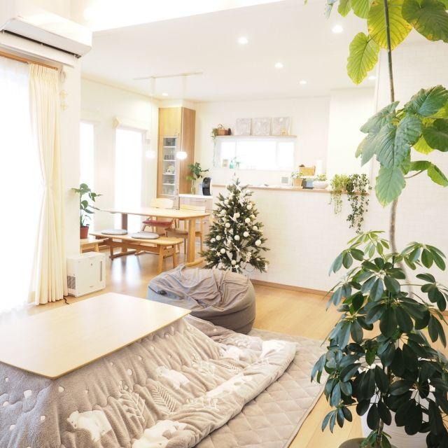 a_tankoさんの、リビング,観葉植物,シンプルナチュラル,冬支度,ニトリのこたつ&布団,ひとをダメにするソファ,のお部屋写真