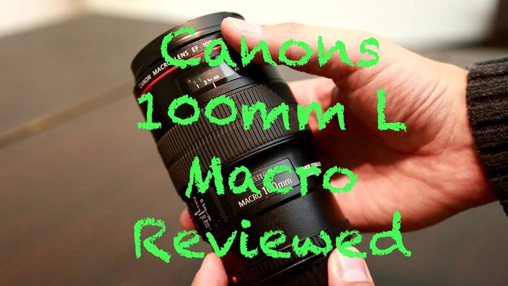 The awesome Canon 100mm f2.8 L Macro Lens Reviewed with sample footage  https://www.camerasdirect.com.au/canon-100mm-macro-lens