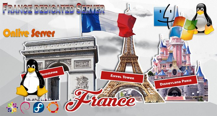 #France #Dedicated #Server availability is accessible from 1Gbps. Its best choice for online gaming hosting.