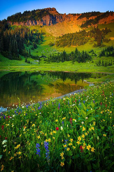✯ Mount Rainier Lake - Washington State