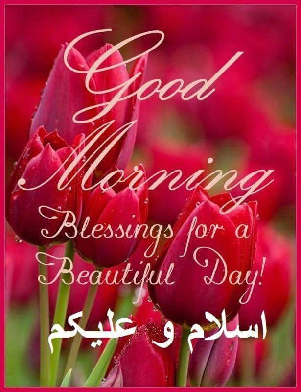 Good Morning Beautiful In Navajo : Best images about morning greetings on pinterest