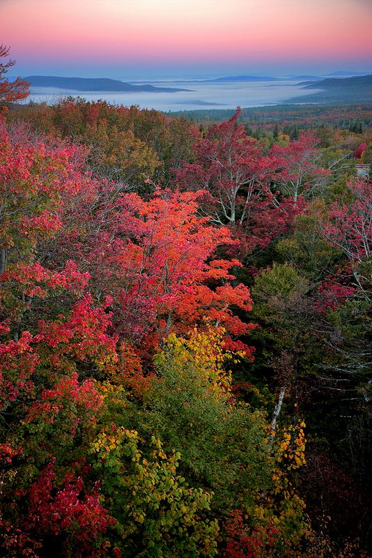 autumn, Franconia Notch State Park, New Hampshire