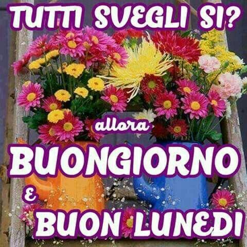 96 best images about buon lunedi 39 buon inizio settimana on pinterest moda mondays and behance for Buon lunedi whatsapp