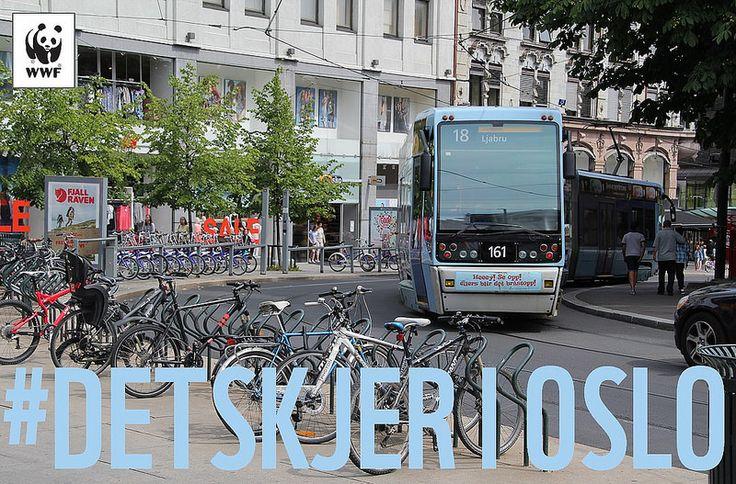 #DetSkjer i Oslo. Seize Your Power