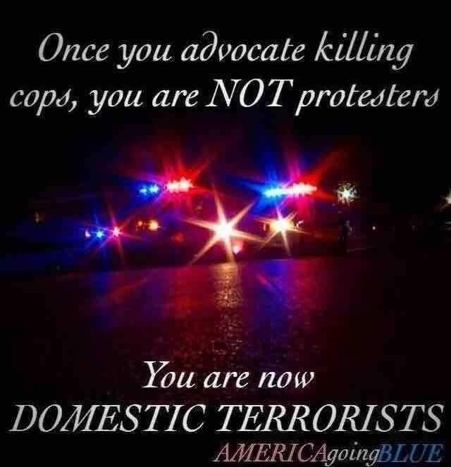 I have nothing against peaceful protest, but killing anyone is not the way to protest. Protesters that cause destruction to property and hurt/kill people are Domestic Terrorists... they are nothing but thugs looking for a reason to spread their violence.