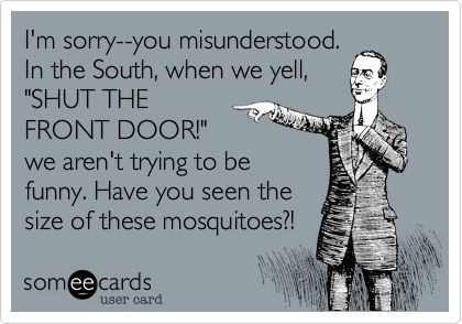 We cannot forget those HORRIBLE gnats either!!: The South, The Doors, Seriously Hav, Ain T, My Life, Southern Thang, Front Doors, Haha Y, Air Conditioning