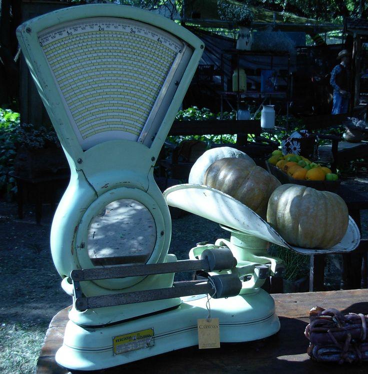 Estamos en Jardinera 2014, en el Parque Araucano. Visitamos hasta el Domingo 16 de Noviembre. Ambientamos 400 mt2 de jardín como un gran almacén, con letreros que ofrecen pan y bebidas de otros tiempos. Nos instalamos con una variedad impresionante de artículos, el espacio parece un museo costumbrista con cosas que todos vimos alguna vez en la casa de los abuelos.