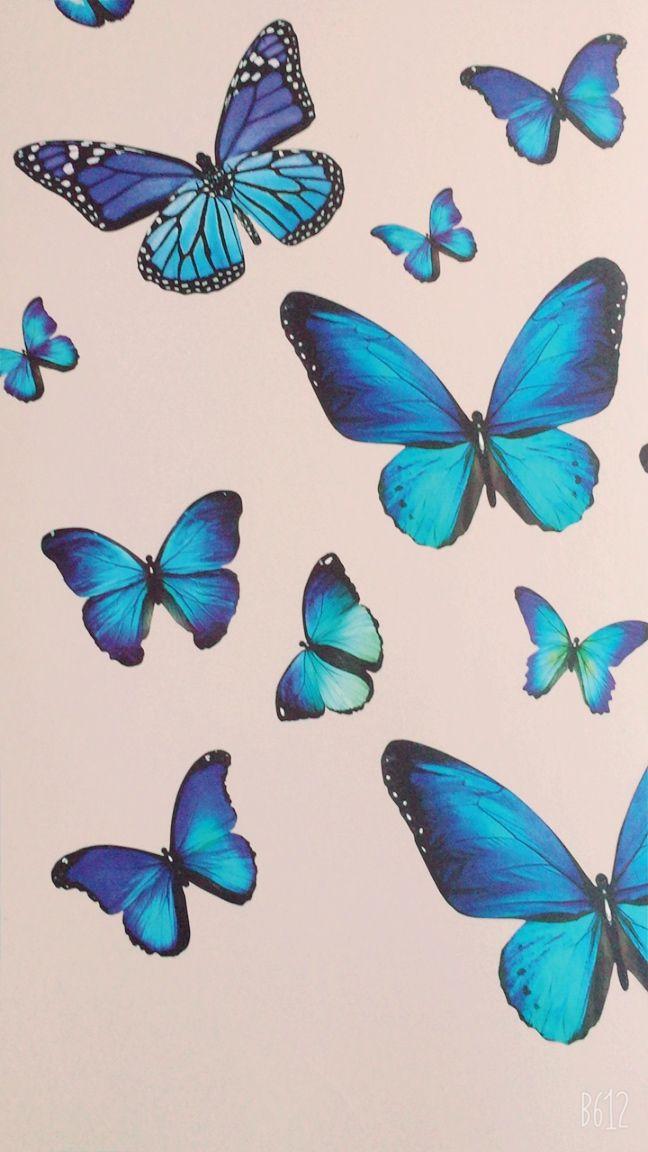 Cute butterfly wallpaper | Butterfly wallpaper, Butterfly ...