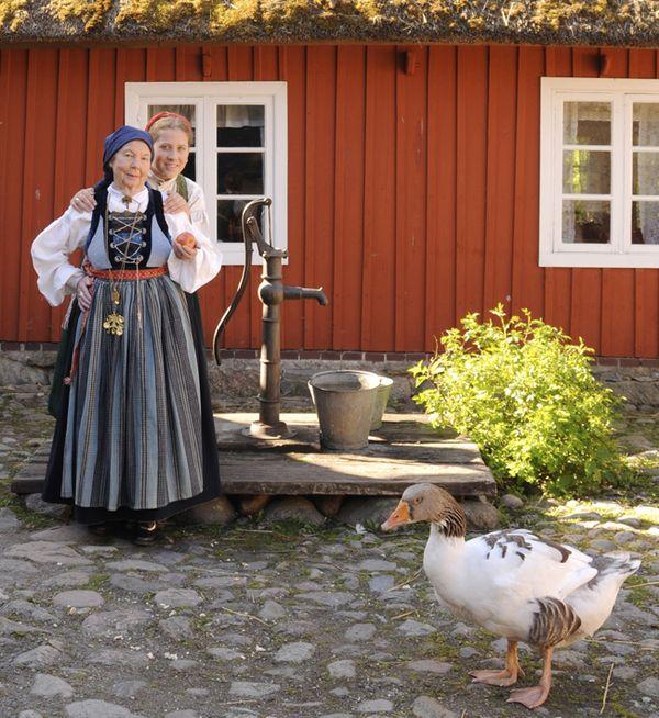 Swedish dress from skåne