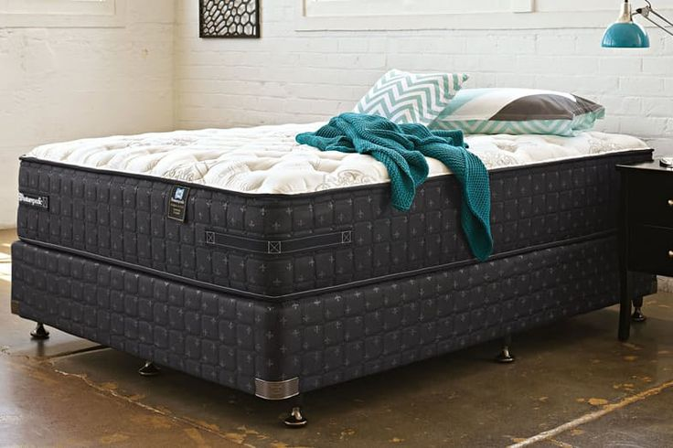 Hampstead Classique Queen Bed by Sealy Posturepedic | Harvey Norman New Zealand