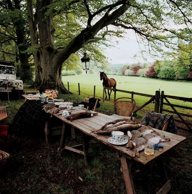 Afternoon tea out in the country