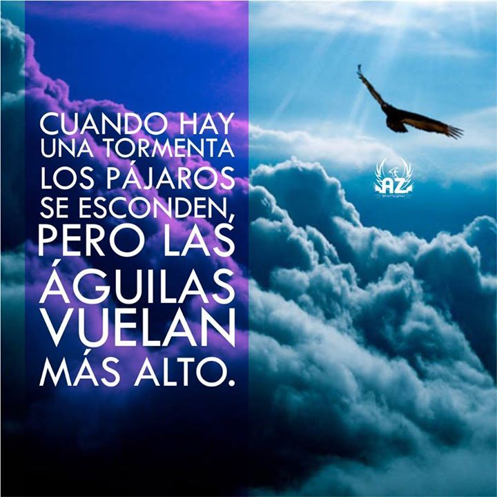 Cuando hay una tormenta los pájaros se esconden, pero las Águilas vuelan más alto!