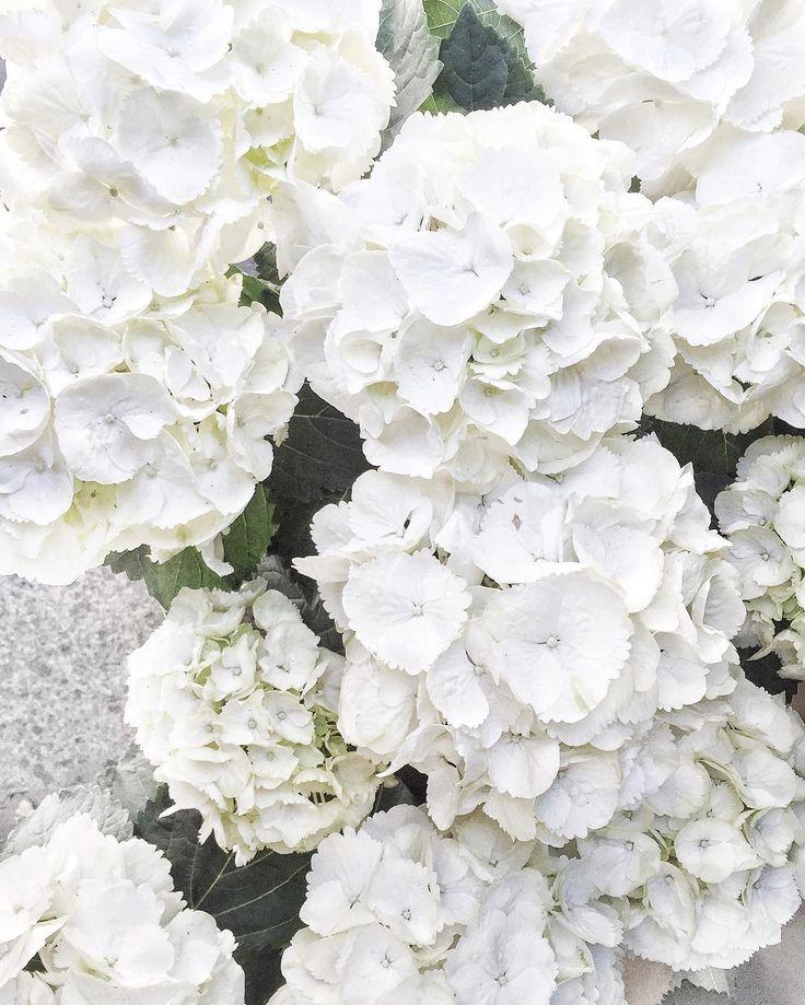 36 besten Brautstrauß Bilder auf Pinterest
