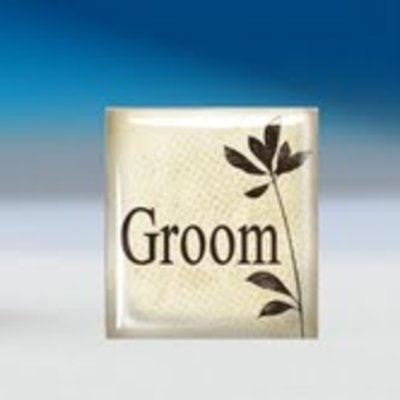 Groom Tie Tack - $6.99. http://www.bellechic.com/products/c6006bdafa/groom-tie-tack