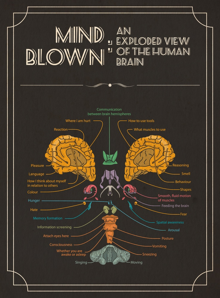 how to develop our brain power