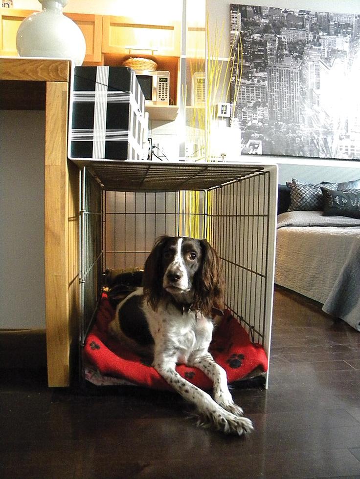 Plexi dog crate cover ... by Yuyu & Gigi Design