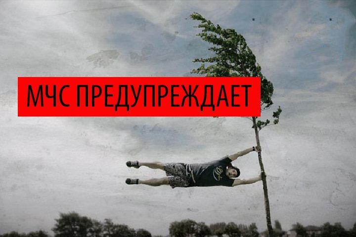 МЧС предупреждает о шквалистом ветре в предстоящий понедельник Подробнее http://www.nversia.ru/news/view/id/104253 #Саратов #СаратовLife