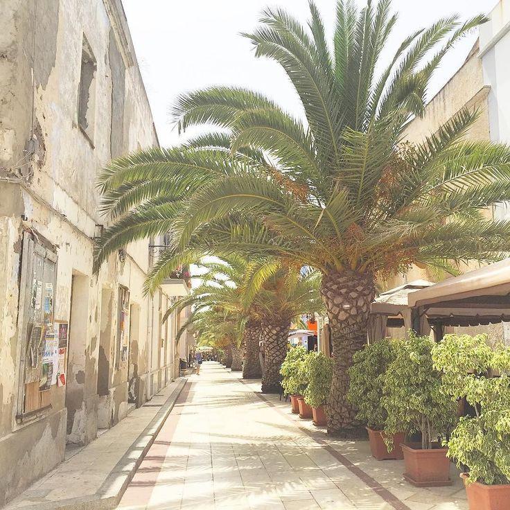 Oggi giornata ventosa ma noi ci rilassiamo a #Calasetta. Nel cuore della cittadina si trovano scorci piacevoli e tanti bar per bere qualcosa di dissetante l'atmosfera è ideale quando in spiaggia il vento è tiranno! #Sardegna #lamiaterra