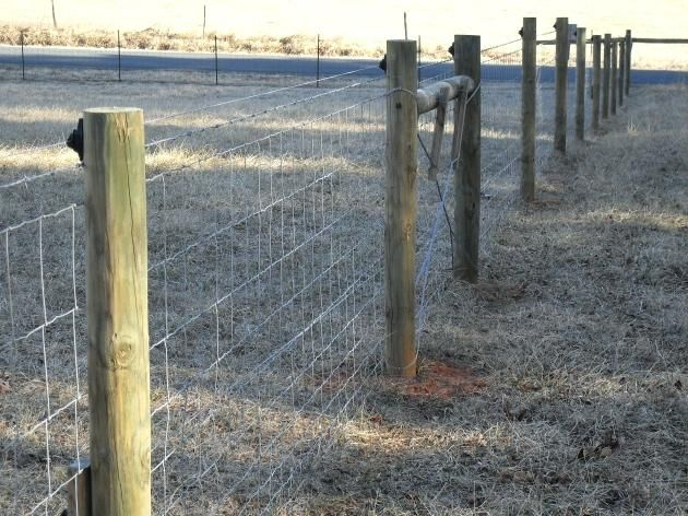 Tractor Supply Wire Fence Popular Barbed Wire Fence Tractor Supply Best Idea Garden Barbed Wire Fence Supplies Tracto Modern Fence Backyard Fences Fence Design