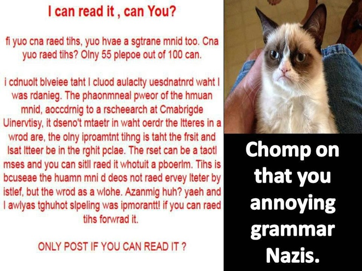 ...or maybe the spelling Nazis.-Grumpy Cat