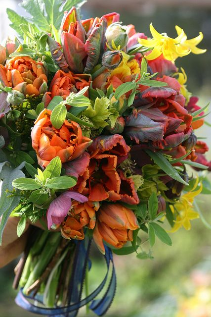 March maids bouquet by Erin Benzakein / Floret Flower Farm, via Flickr