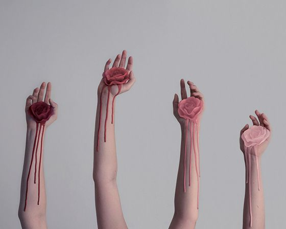 I must have florals on the brain this week, because Brooke Didonato's Roses project stopped me in my tracks....