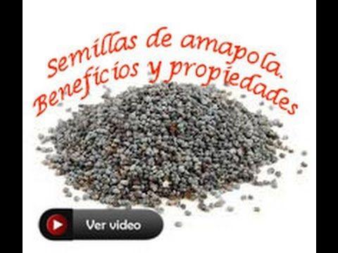 Semilla de amapola  Beneficios y propiedades