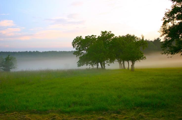 Szubalpin klima az Őrségben - orseg-szallas.hu