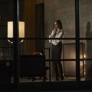 Winner of the Grand Jury Prize at the 2016 Venice International Film Festival. From writer/director Tom Ford comes a haunting romantic thriller of shocking intimacy and gripping tension that explores the thin lines between love and cruelty, and revenge and redemption. Academy Award nominees Amy Adams and Jake Gyllenhaal star as a divorced couple discovering dark truths about each other and themselves in NOCTURNAL ANIMALS.