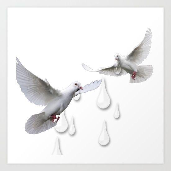 #prince, #doves, #cry, #tears, #thisiswhatitsoundslikewhendovescry,  #song,